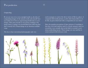 Field Studio ebook.050115.36
