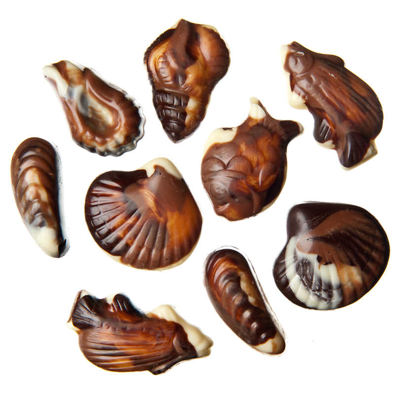 Charlotte's chocolate, sea shells