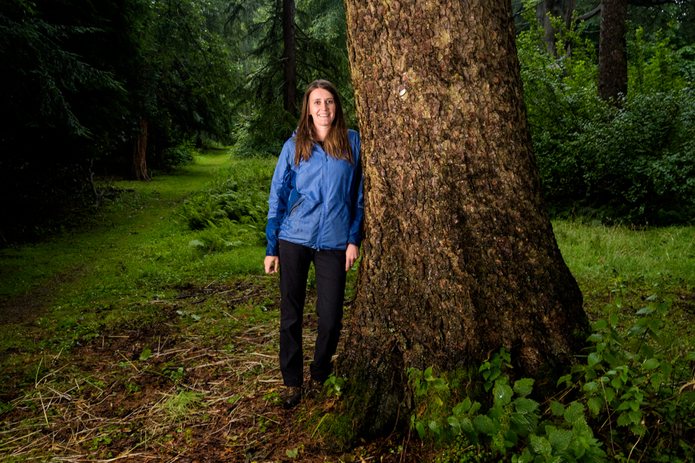 Maree Morrison, Morinda spruce, Hopetoun House, Scottish Tree of the Year 2016