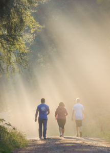 Walkers in misty forest, Kirkhill, Aberdeenshire and Moray District,Forestry Commission, Scotland