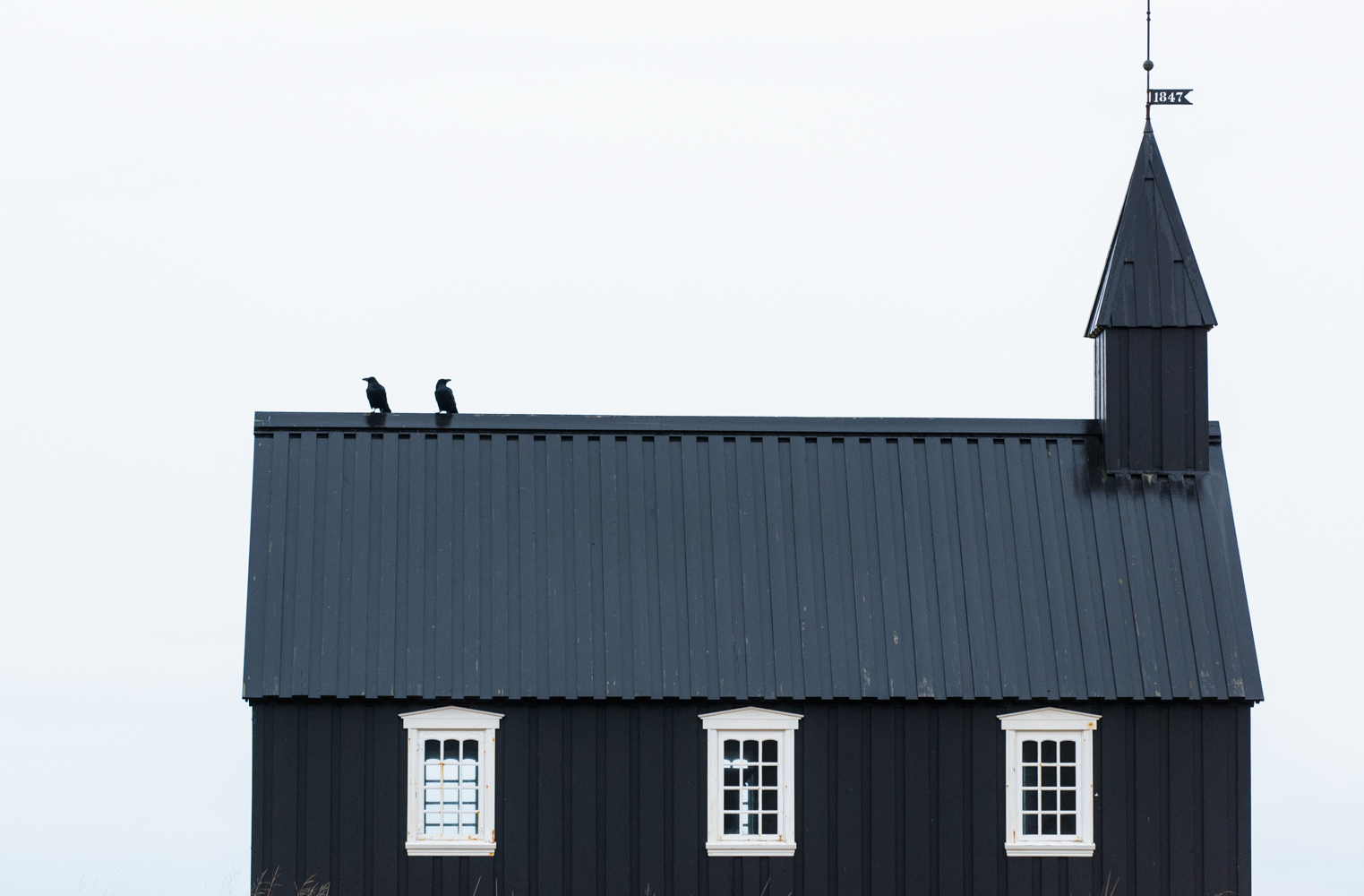 Ravens on the roof of the church at Buðir, Iceland