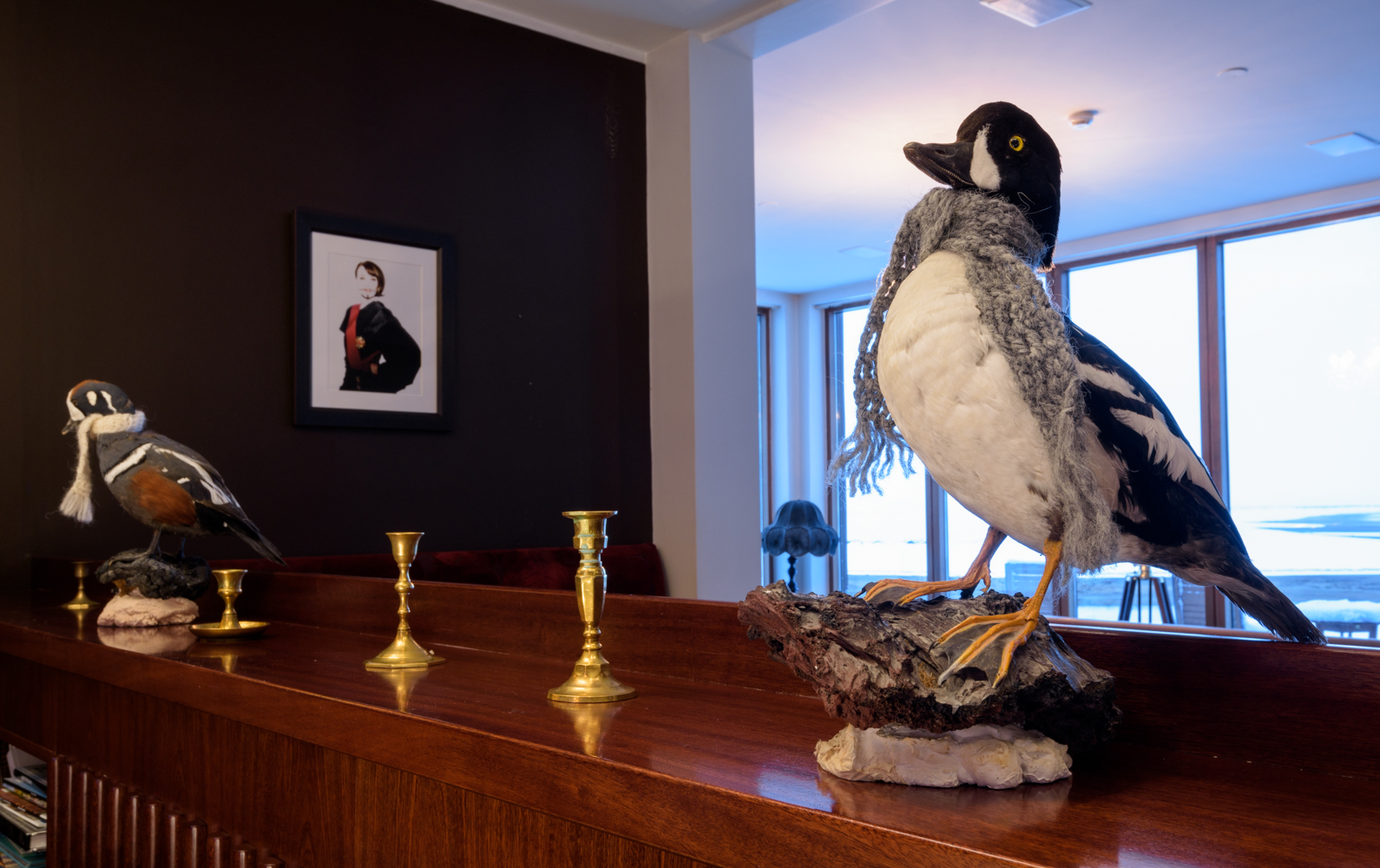 Stuffed Barrow's goldeneye and harlequin ducks, Hotel Búðir, Iceland