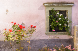 House and flowers, Kropa, Slovenia