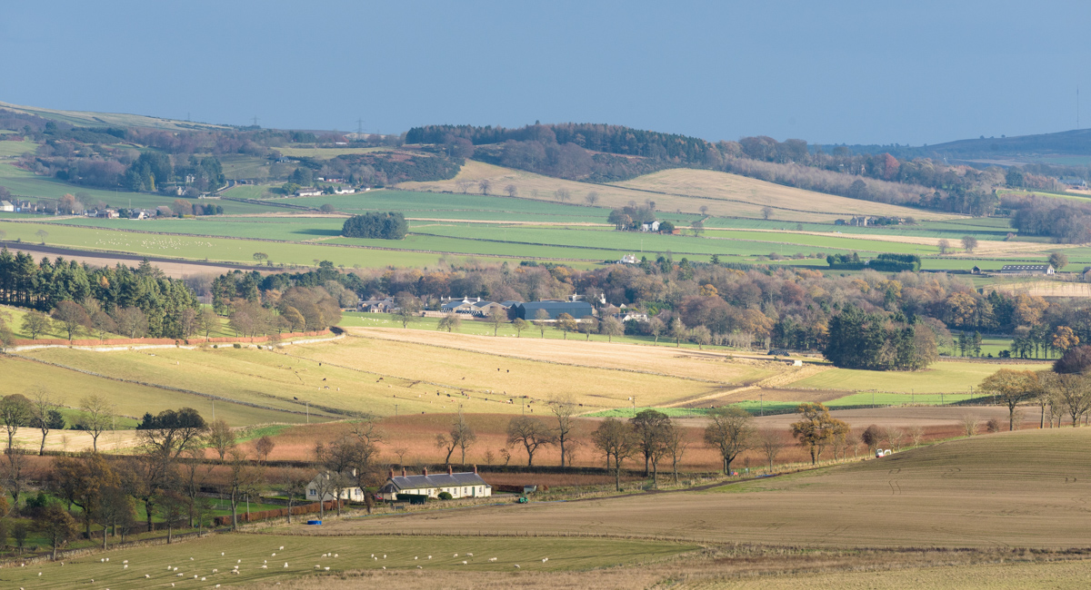 Sidlaws, Angus, Scotland